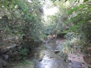 西河原公園小川